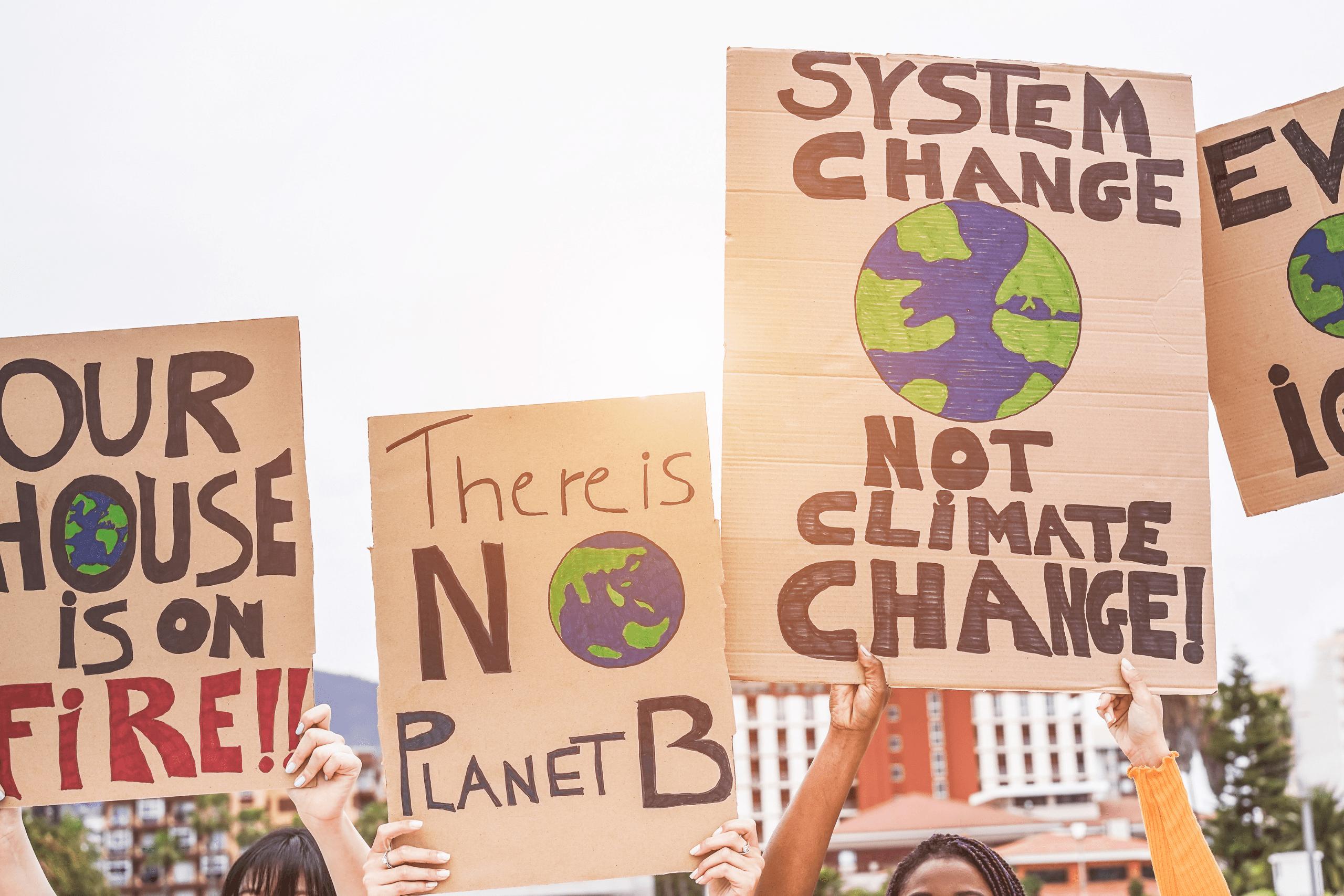 climatechangeWEBSITE BLOG image-4